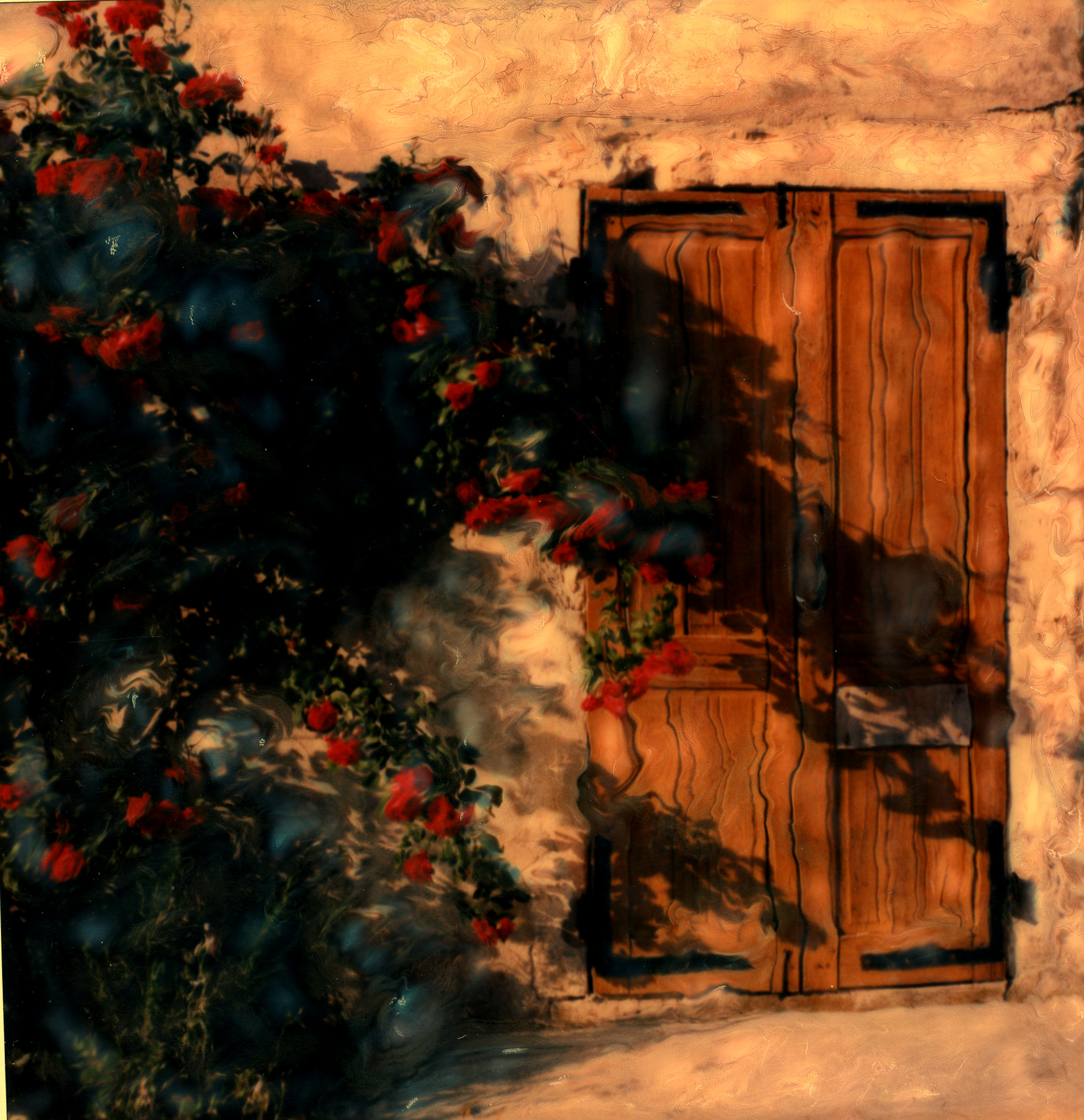 Doors ~ Anticipation or Apprehension?